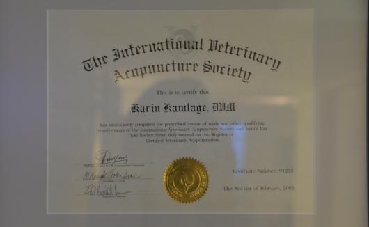 Diplom der Gesellschaft für Akupunktur - damit verfügt Frau Dr. Kamlage über die Zusatzbezeichnung Akupunktur